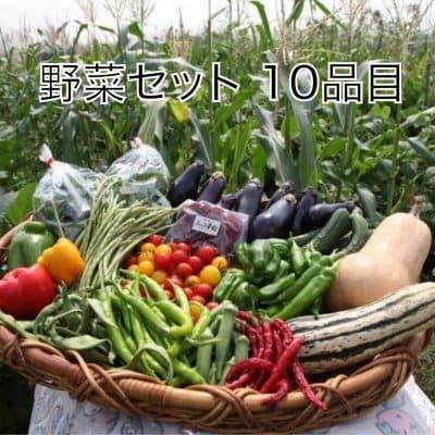 ★送料無料★【数量限定】【無農薬・自然栽培】旬の野菜を詰め込んだ野菜...