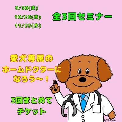 3回おまとめチケット 愛犬のホームドクターになろう〜!