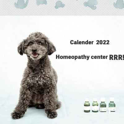 [LINEお友達登録者様用]犬の写真とホメオパシー 2022カレンダー