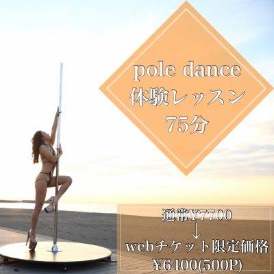 【対面】Pole dance体験レッスン75分《高ポイント還元》