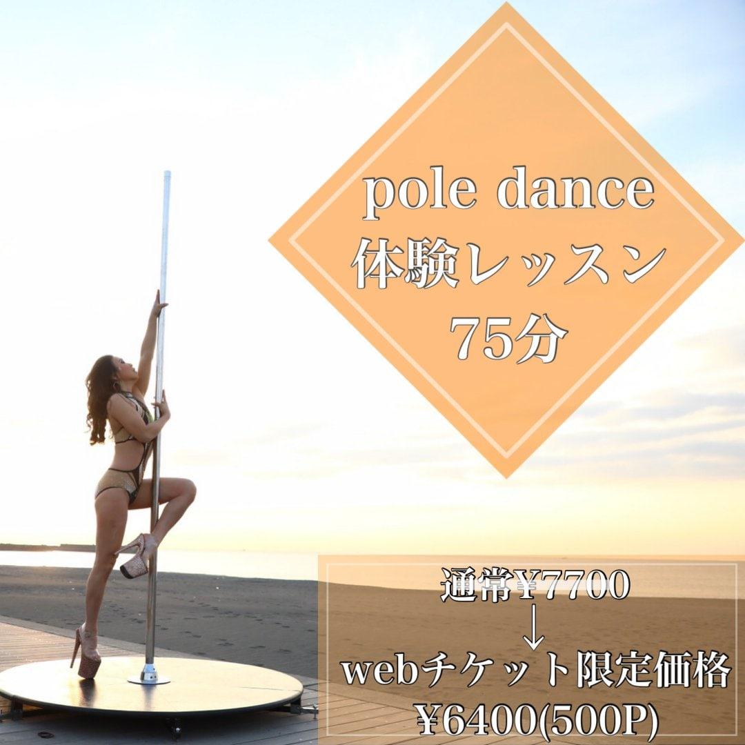 【対面】Pole dance体験レッスン75分《高ポイント還元》のイメージその1