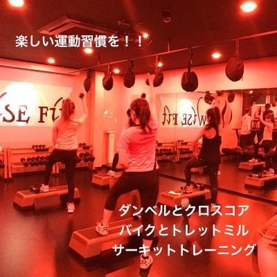 【体験】wise fit