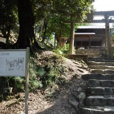 広島里山「ひょんのき横あるき」チケット1月19日火曜日府中町茶臼山〜みくまり公園