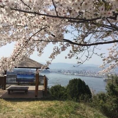 広島里山あるき「ひょんのき横あるき」チケット4月3日土曜日森山152m〜坂町横浜公園
