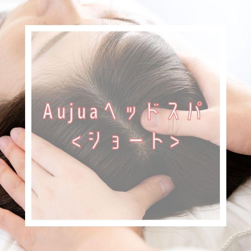 【店頭払い専用】Aujuaヘッドスパのイメージその1