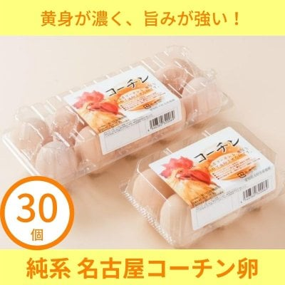 【30個入り】「純系 名古屋コーチンの卵」日本三大地鶏!! 本当に美...
