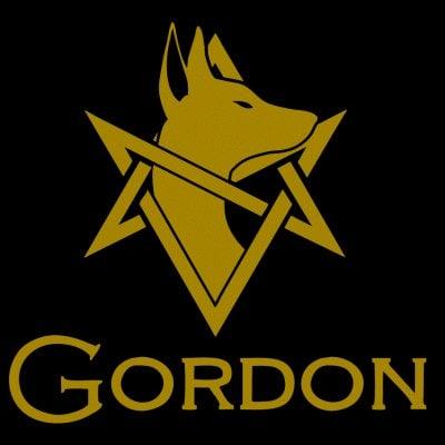 GORDON Tシャツ-⑤