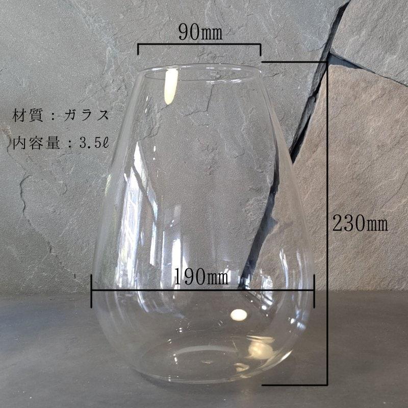 苔テラリウム LED付きミドルサイズ 容器作成チケット inラプトルのイメージその3