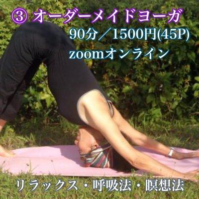 ③オーダーメイドヨーガ/90分/1500円(45P)/zoomオンライン