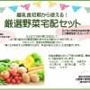 10月5日宅配【土の味】離乳食用厳選野菜セット6〜8品入り 安心・安全・おいしいの三拍子揃ったセットです。大切なご家族に一級品のお野菜を。