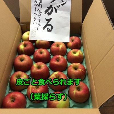 産地直送/特別栽培りんごサンふじ5kg(16~20玉)/長野県産細田農園/旬の品種をお届け!/皮ごと食べられる安心・安全なりんごです!