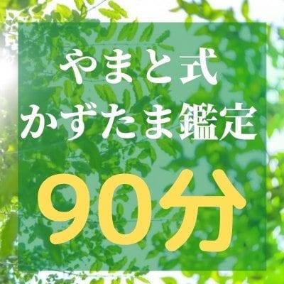 やまと式かずたま術鑑定 【90分】オンライン鑑定