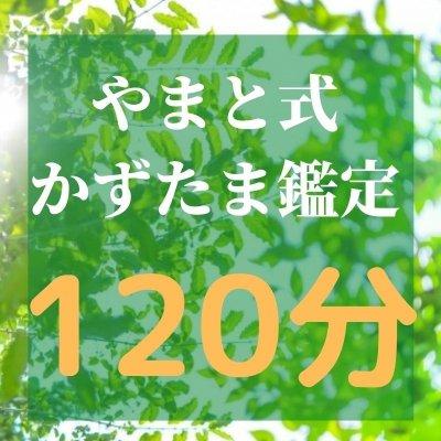 やまと式かずたま鑑定【120分】Zoomセッション