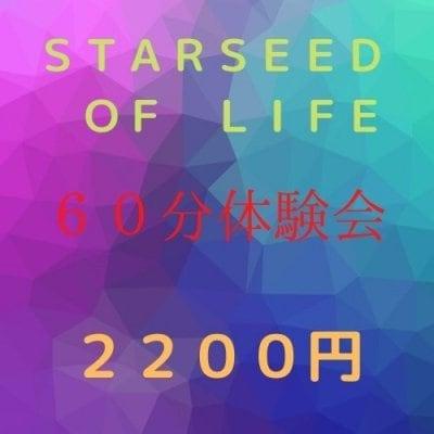 STARSEED OF LIFE オンラインのみ体験会 1時間 【グループワーク】