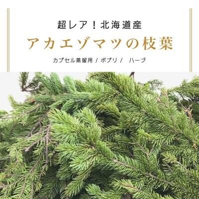 【北海道産・アカエゾマツ枝葉】180g /カプセル蒸留用/ポプリ/ハーブ
