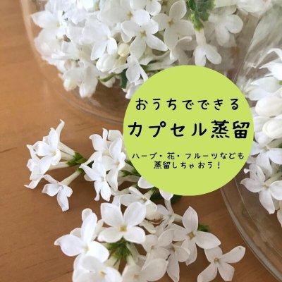 【カプセル蒸留講座】オンライン講座