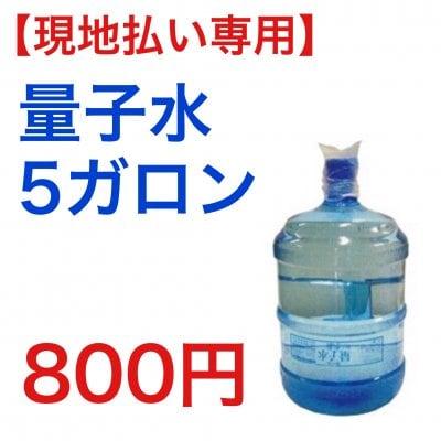 【現地払い専用】量子水5ガロンチケット