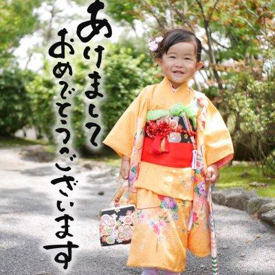 Photo Studio ohana × Narumi Studio  コラボイベント