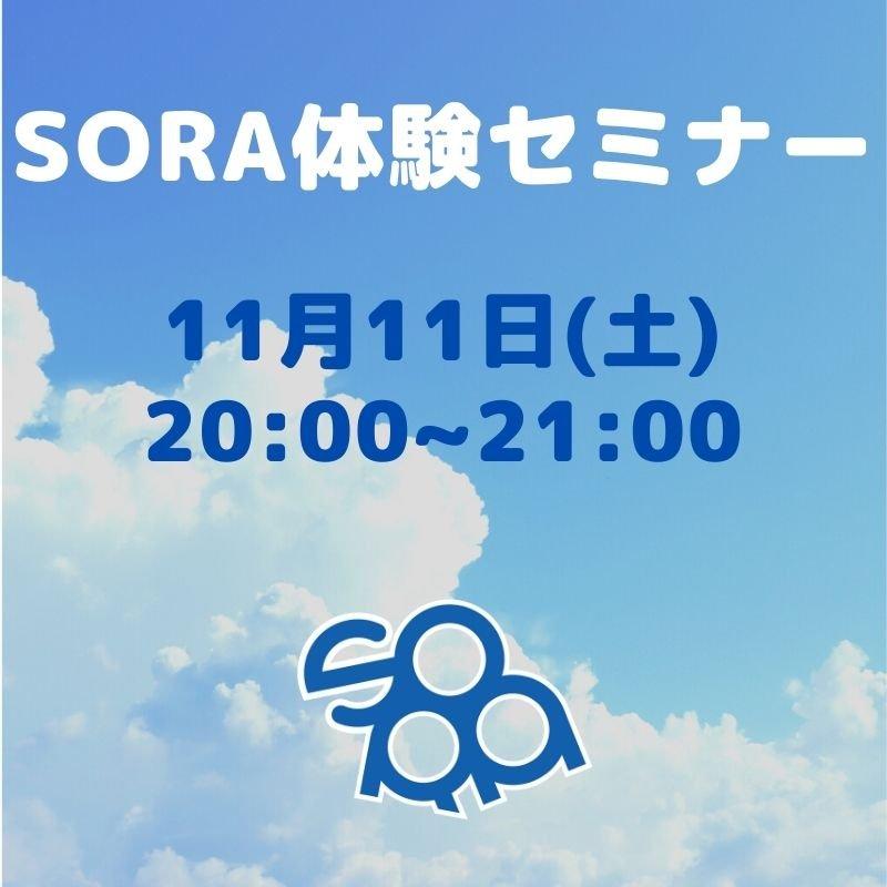 SORA体験セミナー 11月11日のイメージその1