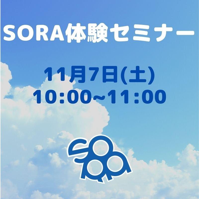 SORA体験セミナー 11月7日のイメージその1