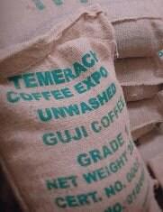 生豆1kg エチオピア グジ ナチュラルG1【Ethiopian Coffee House】