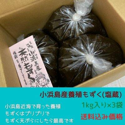 【1kg入り×3袋】小浜島産養殖もずく(塩蔵)