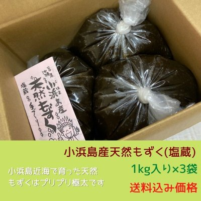 【1kg入り×3袋】小浜島産天然もずく(塩蔵)