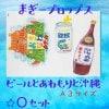 ビール+泡盛+沖縄☆まぎーフォトプロップスOセット