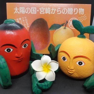 日向夏ちゃんと完熟マンゴーくんの詰め合わせ