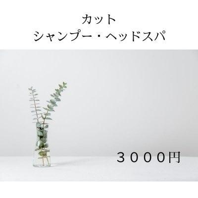 【現地払い専用】シャンプー・ヘッドスパ付きカット