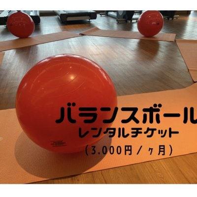 【レンタル】バランスボール 1カ月レンタルチケット