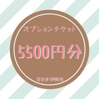 オプション 5500円チケット
