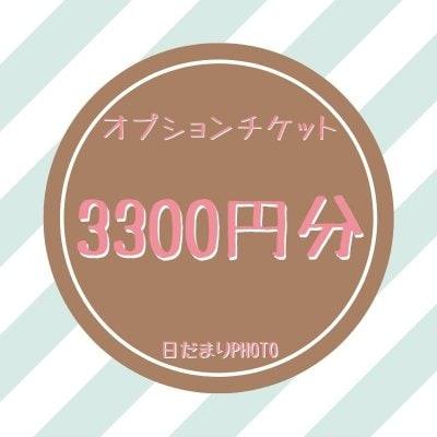 オプション 3300円チケット