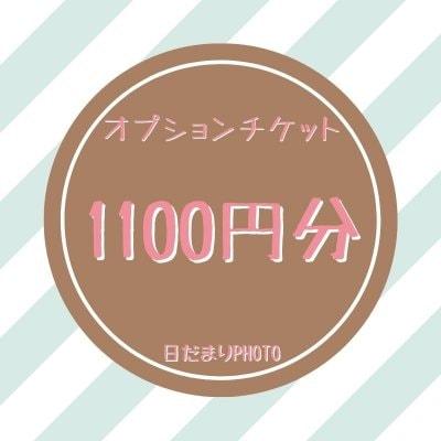 オプション 1100円チケット
