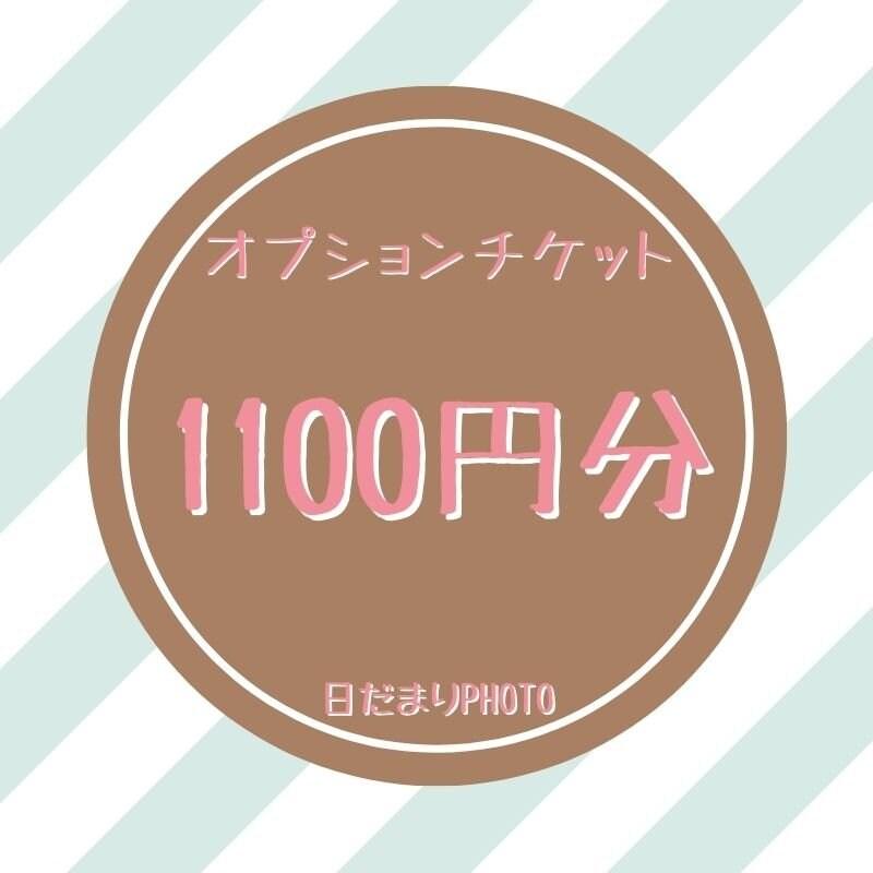 オプション 1100円チケットのイメージその1