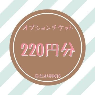 オプション 220円チケット