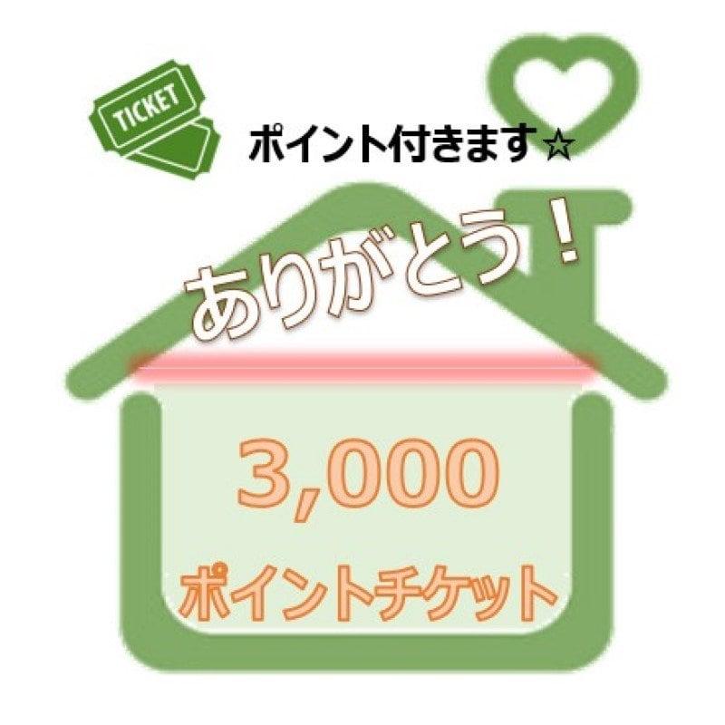 【ありがとう】3000ポイントチケットのイメージその1
