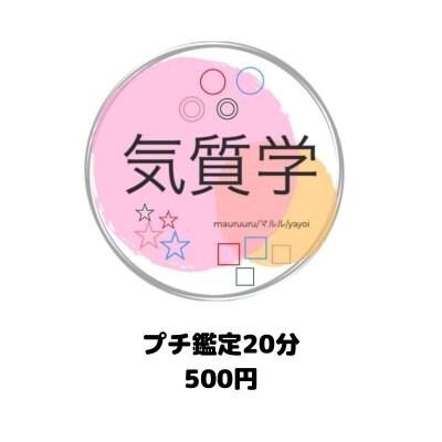 気質学プチ鑑定(20分)