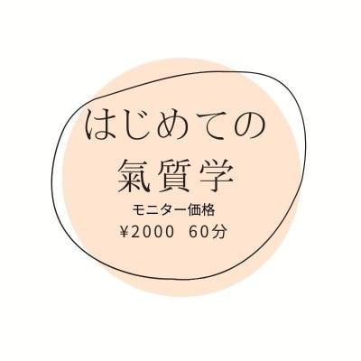 はじめての氣質学鑑定(60分)「モニター」