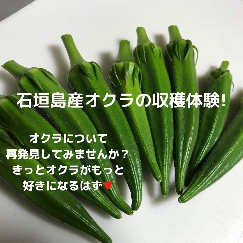 砂川農場 農業体験(オクラ収穫or 種蒔き)ウェブチケットのイメージその2
