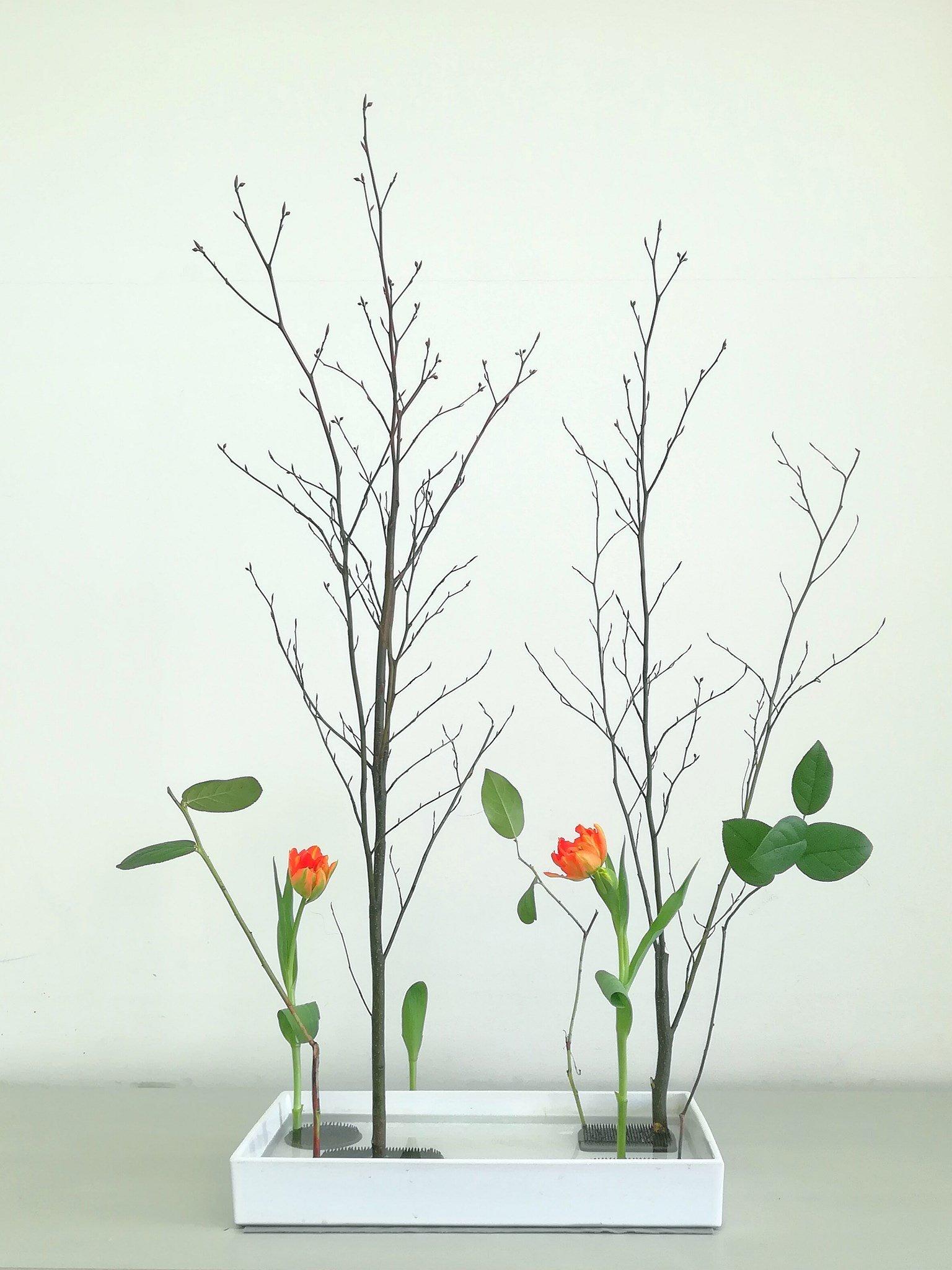 型のない生け花〜自分と繋がる時間 3月13日土曜日開催のイメージその3