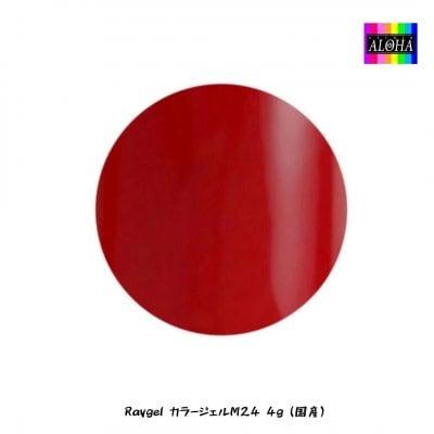 Raygel カラージェルM24 4g(国産)