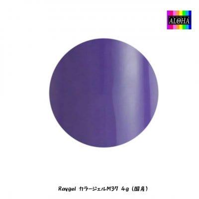 Raygel カラージェルM37 4g(国産)