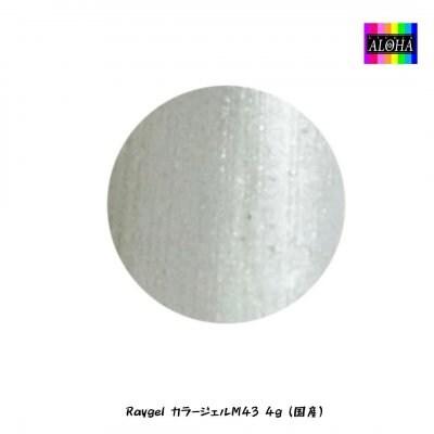 Raygel カラージェルM43 4g(国産)