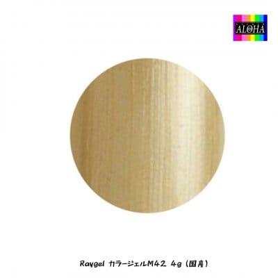 Raygel カラージェルM42 4g(国産)