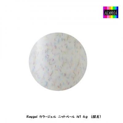 Raygel カラージェル ニットベール N1 4g (国産)