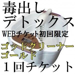初回限定【店頭払い専用】HP限定専用チケット券 ゴッドクリーナー