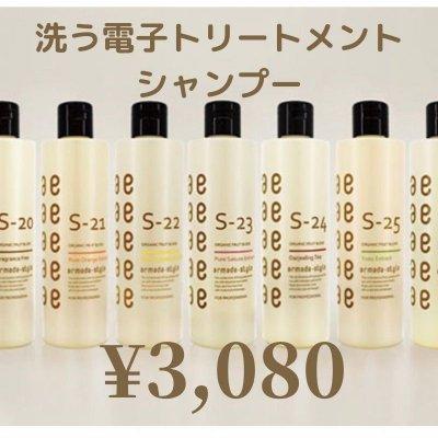 【現地払い専用】サロンチケット洗う電子トリートメントシャンプー300ml