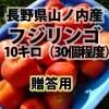 農家さん直送 贈答用 信州リンゴ10キロ:【フジ12月中旬まで】長野県山ノ内町産