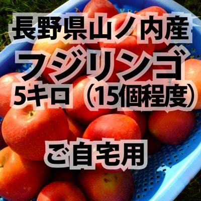 農家さん直送 ご自宅用 信州リンゴ5キロ:フジ 長野県山ノ内町産
